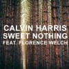 florence-welch, calvin-harris, sweet-nothings